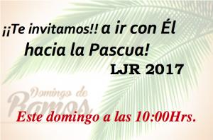 Domingo de Ramos LJR